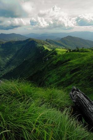 チェンライ タイで phuchifha 状態 写真素材