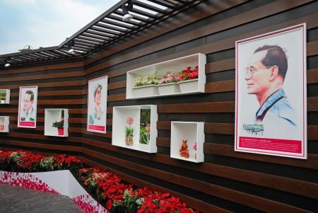 duties: Royal duties on image manipulation,King of thailand Editorial