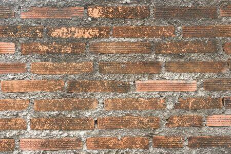 abandoned house: Brick wall background