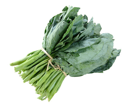 brassica: Kai-Lan, Chinese Broccoli, Chinese Kale in isolate white background Stock Photo