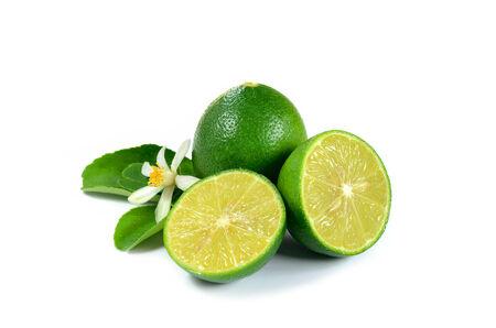 白い背景の上に新鮮なレモン 写真素材