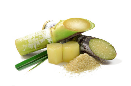 sugarcane: Sugar cane isolated on white background Stock Photo