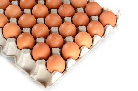 mismatch: Carton of Eggs