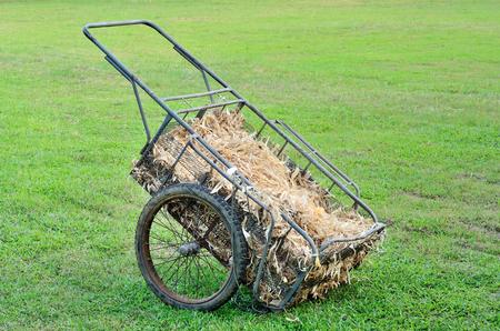 Wheelbarrow on yard photo
