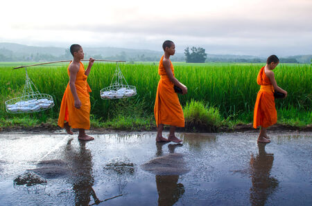CHIANGMAI, THAILAND - OCT 24: walking for food offering in the morning on Oct 24, 2014 in Maechaem, Chiangmai, Thailand