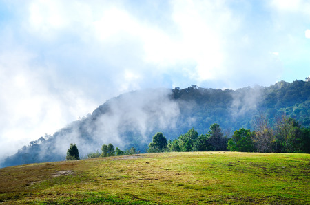 foggy hill: Hill mountain and foggy