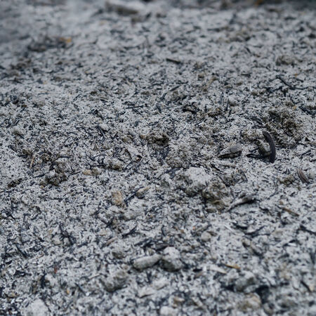 Fly ash raw material for mix with concrete as background