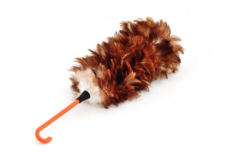 putz: feather duster isolate on white background