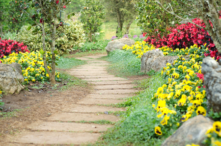 flowers in the garden: pathway in the park Stock Photo