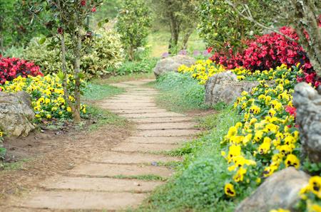 flower garden: pathway in the park Stock Photo