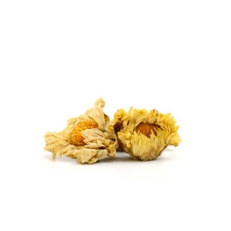 Close up dried chrysanthemum flowers isolate on white