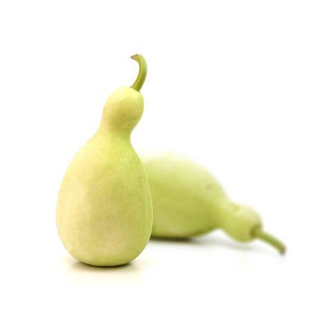flowered: Bottle gourd, Calabash gourd, Flowered gourd, White flowered gourd,vegetable plant isolate on white