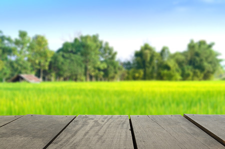 grow food: Defocused and blur image of terrace wood and agriculture life for background usage