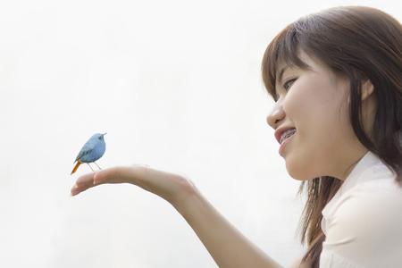 young bird: Young Bird Nestling .Chick Baby Plumbeous Redstart Rhyacornis fuliginosa In Female Hands