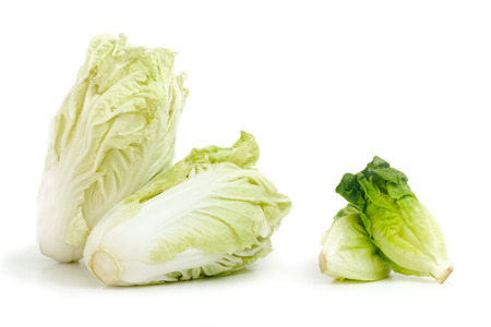 nappa: Nappa cabbage and Baby Cos lettuce put in beautiful cup isolate on white