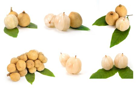 lanzones: Collection Longkong Langsat or Lanzones fruit isolate on white background.
