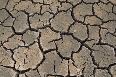 waterless: Dry soil as background texture