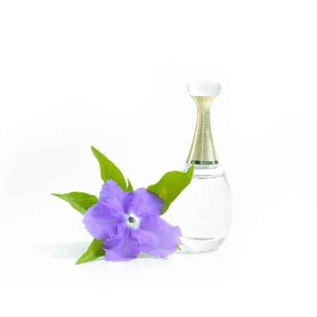 morning noon and night: perfume with violet flower