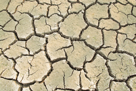 waterless: Dried ground soil is crack as texture and background