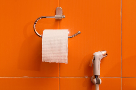 Toilet tissues box wall hanging design with spray hose