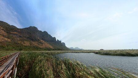 Bung Bua Wetland in Khao Samroiyod national park, Prachuap khiri khun Thailand. Фото со стока