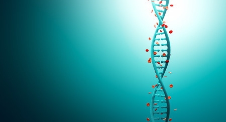 bioengineering: Dna Strands with Hemoglobin