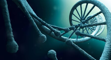 bioengineering: DNA structure close up Stock Photo