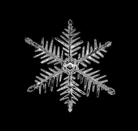 Single snowflake on black background, close up Foto de archivo
