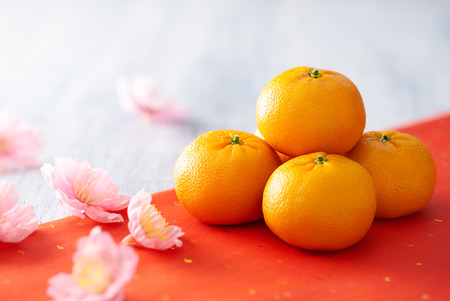 chinese festival: Chinese New Year - Mandarin orange and flowers