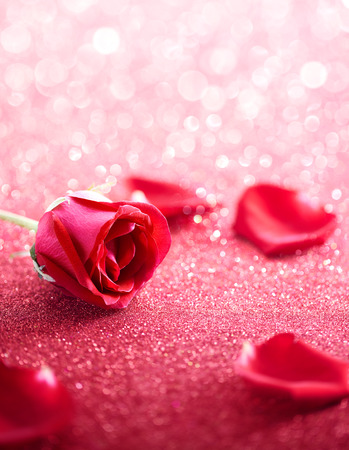 Red rose and petal over glittering background