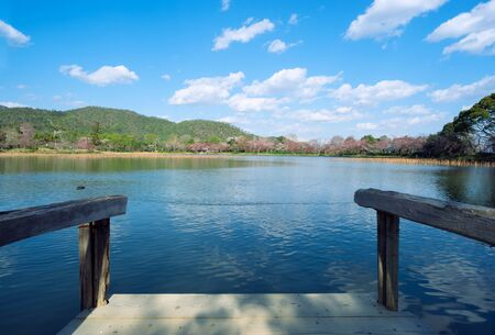 Wooden dock in front of lake with nature landscape during spring time