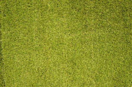 Green grass seamless background photo