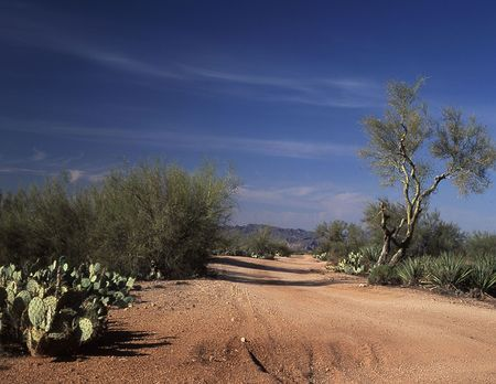 four peaks wilderness: Four Peaks Mountain Wilderness back road