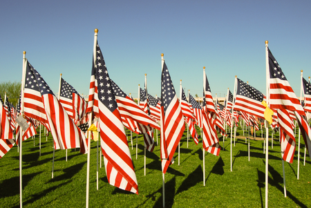 2977 American flags, one for each victim of the 911 tragedy, flys on the anniversary day.