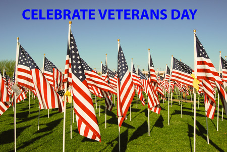 armistice: A celebration honoring military personnel who served in the United States Armed Forces
