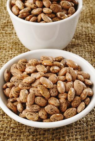 pinto bean: pinto bean on bowl