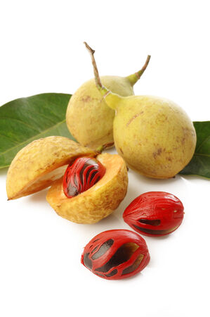 nutmeg fruits on white background