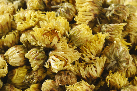 chrysanthemum tea Фото со стока