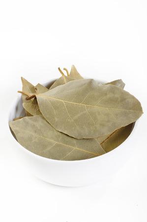 bay leaf: Dry bay leaf in white bowl Stock Photo