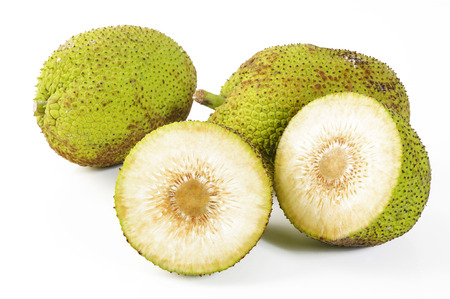 Breadfruit on white background Фото со стока