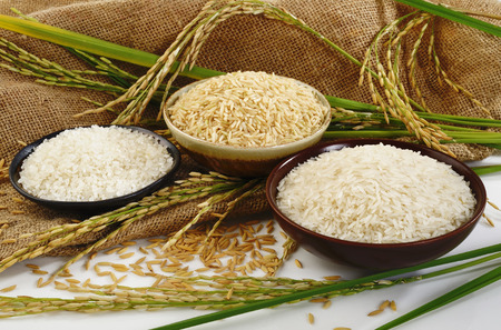 rice plant: paddy rice,brown rice,white rice and japanese rice on sack  Stock Photo