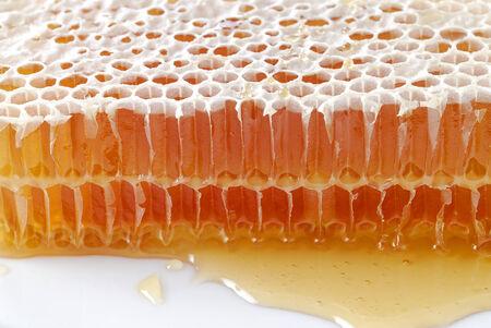 honeyed: heneycomb on white Stock Photo