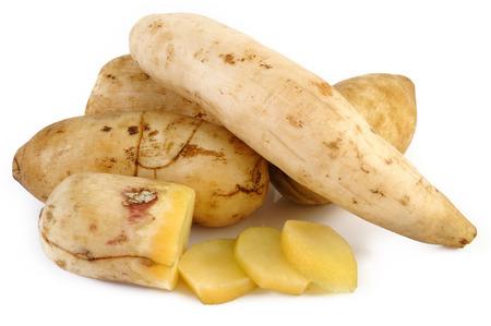 Yacon root on white background Фото со стока