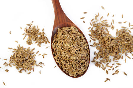dill: dill seeds in wooden spoon