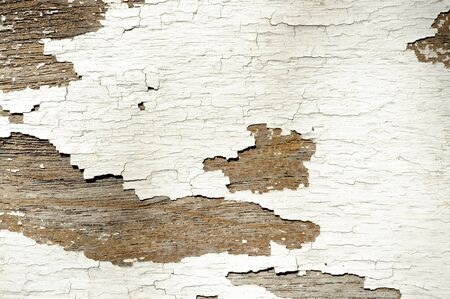 painted wood: painted wood texture