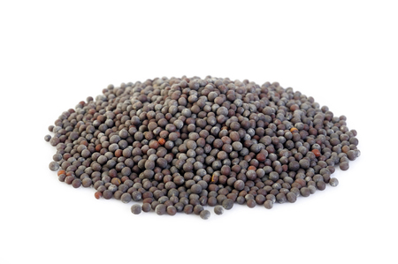 black mustard seeds on white background
