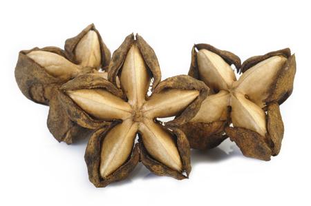 dried sacha inchi on white background Stock Photo
