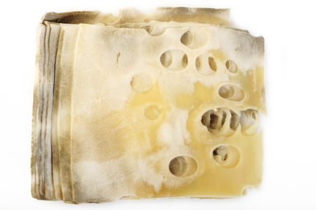 Cheese rot on white background Imagens