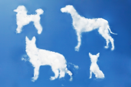 dog clouds shape