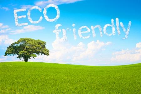 Eco-vriendelijke een wolk massage floting in het park